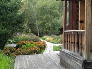maria-porch-to-back-yard-676x507
